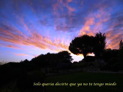 SOLO_QUERIA_DECIRTE_ANVERSO1.jpg