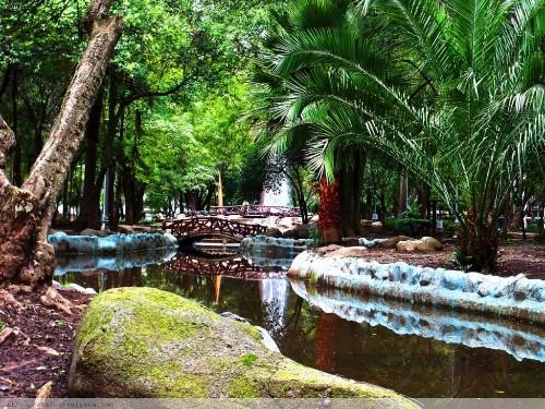 Klein_parque3.jpg