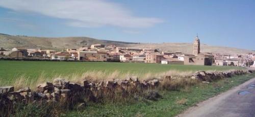 13173-alba-del-campo6.jpg